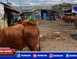 Harga Sapi di Pasar Sampang Turun Drastis, Pedagang Merugi