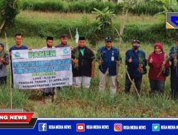 Inovasi Pemuda Milenial Robatal Sampang Dalam Bertani Bawang Merah