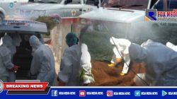 Sepekan Terakhir, PMI Pemulasaraan Jenazah Positif Covid-19 di Sampang
