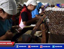 Sebanyak 70 Pabrikan Rokok Legal di Pamekasan Masih Masuk Tipe Golongan III