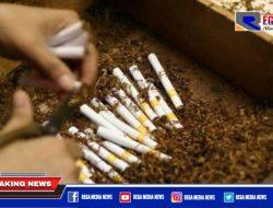 Gunakan Anggaran DBHCHT, Pelatihan Linting Rokok di Pamekasan Gandeng Pabrik Legal